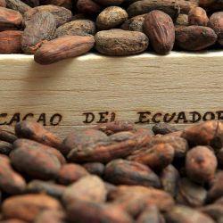 Kakao & Co.