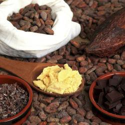 Bio Arriba Cacao Nibs sanft geröstet &...